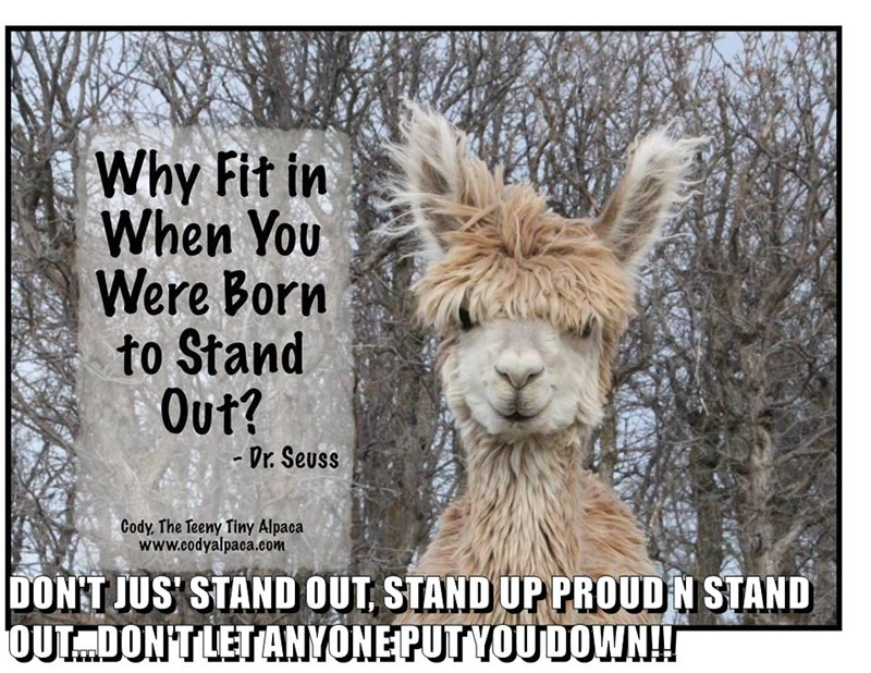 DON'T JUS' STAND OUT, STAND UP PROUD N STAND OUT...DON'T LET ANYONE PUT YOU DOWN!!