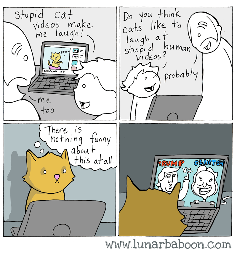 web comics politics cats It Doesn't Mean Much, Cats Think All People Are Stupid