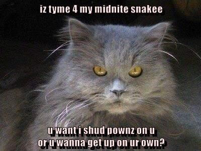 iz tyme 4 my midnite snakee  u want i shud pownz on u                                                                                                     or u wanna get up on ur own?