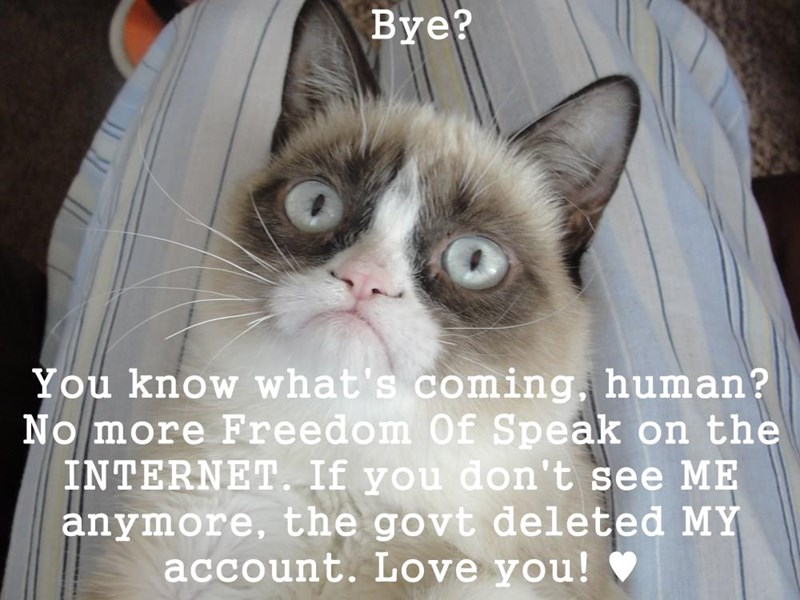 Bye?  You know what's coming, human? No more Freedom Of Speak on the INTERNET. If you don't see ME anymore, the govt deleted MY account. Love you! ♥
