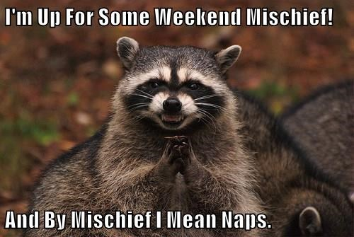 I'm Up For Some Weekend Mischief!  And By Mischief I Mean Naps.