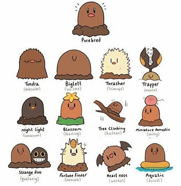 pokemon-diglett-variations-are-all-so-adorable