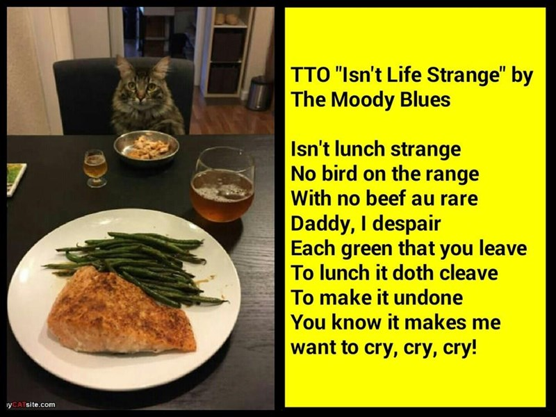 """Isn't Lunch Strange"" (TTO ""Isn't Life Strange"" by The Moody Blues)"