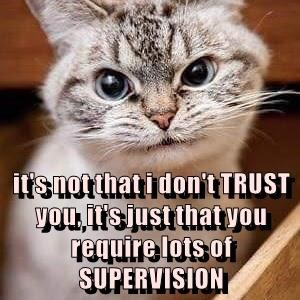 it's not that i don't TRUST you, it's just that you require lots of SUPERVISION
