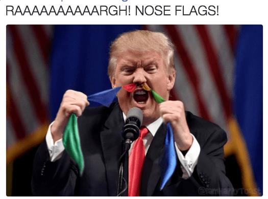 trump flags - Speech - RAAAAAAAAAARGH! NOSE FLAGS! eamtaihyToas