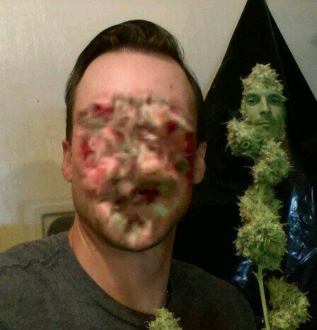 funny win image guy faceswaps with weed