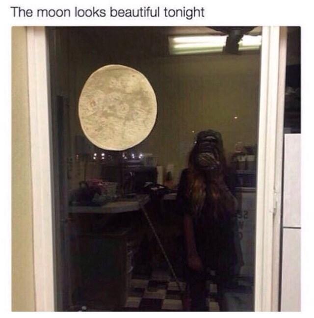 moon DIY image - 8981740544