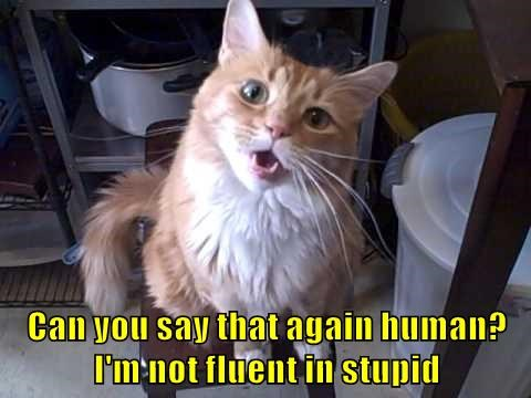 Can you say that again human?  I'm not fluent in stupid