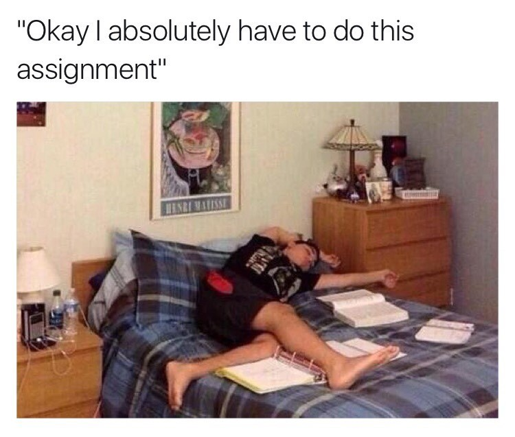 homework procrastination naps image - 8981936896