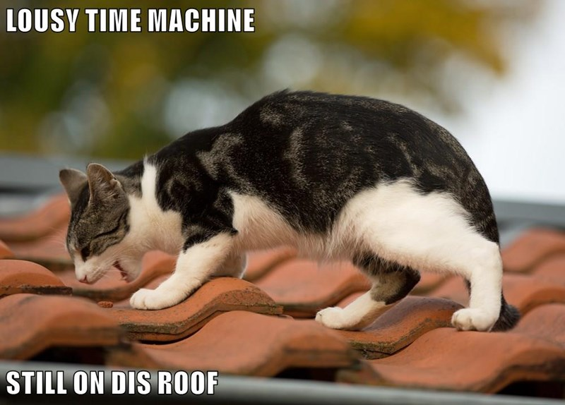 LOUSY TIME MACHINE  STILL ON DIS ROOF