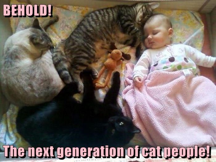 BEHOLD!  The next generation of cat people!