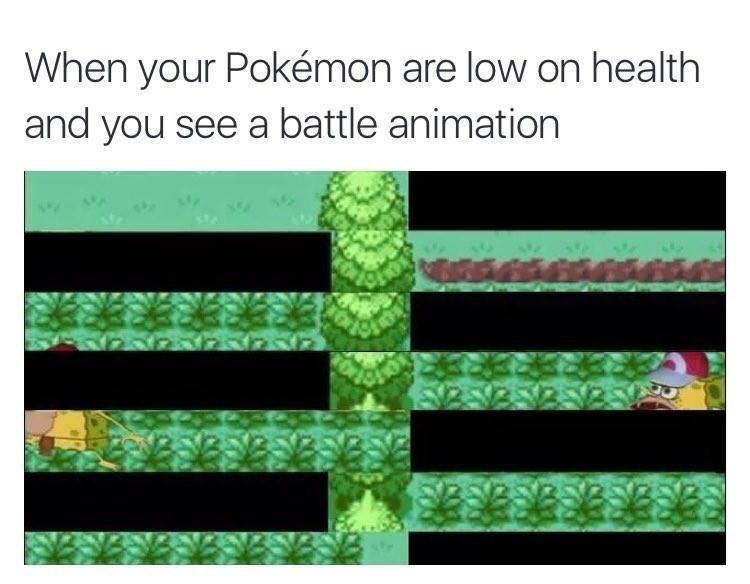 Pokémon,SpongeBob SquarePants,Memes