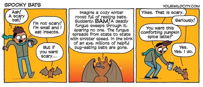 psa bats web comics - 8982396416