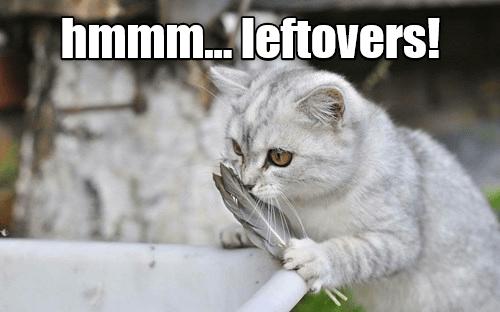 Hmmm... Leftovers!