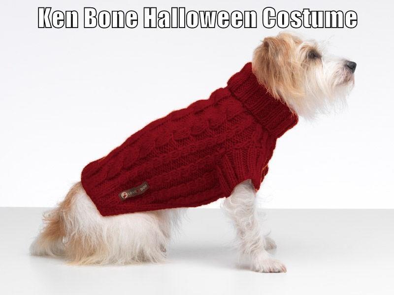 Ken Bone Halloween Costume