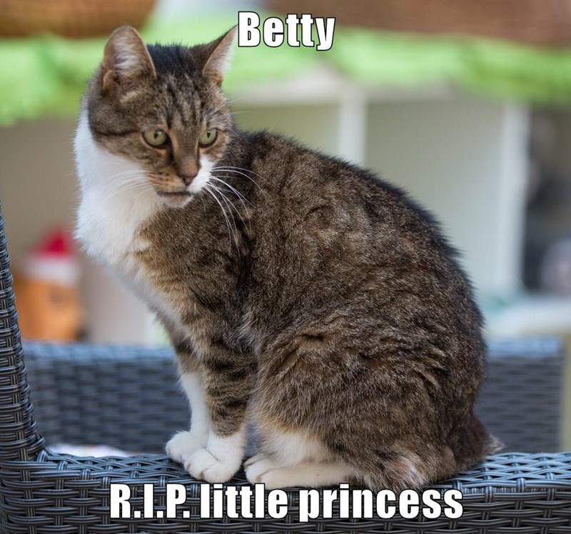 Betty  R.I.P. little princess