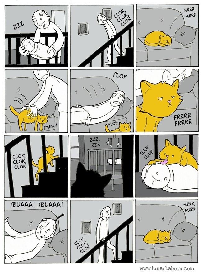 gatos,bromas,viñetas,listas