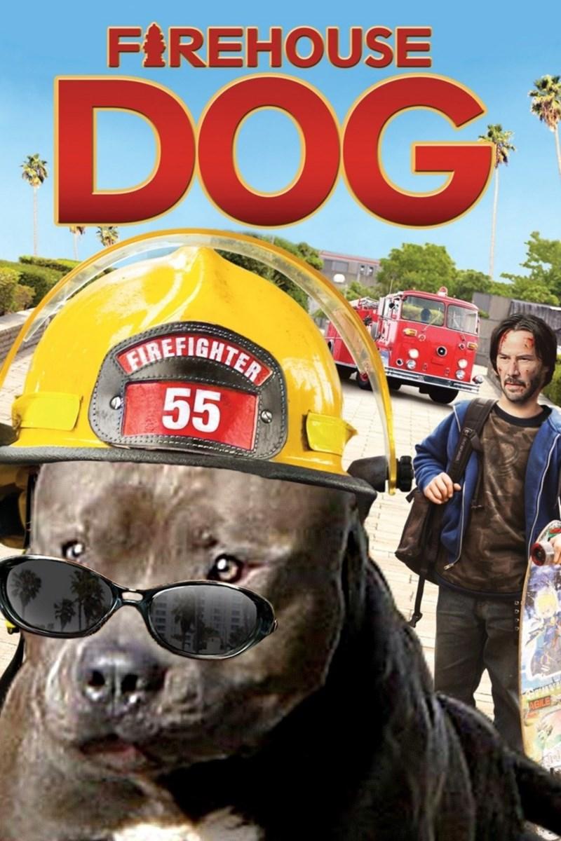 Eyewear - FIREHOUSE DOG FIREFIGHTER 55 AGILE