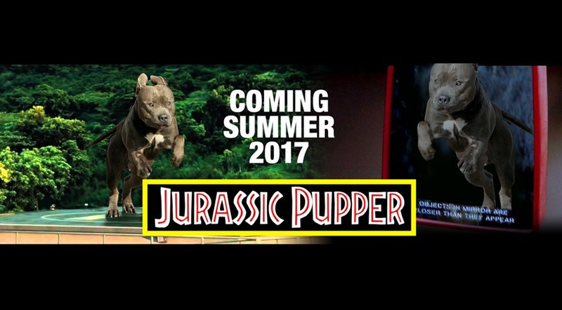 Organism - COMING SUMMER 2017 JURASSIC PUPPER OBJECTSIN NRROR ARE OSER THAN THY APPEAR