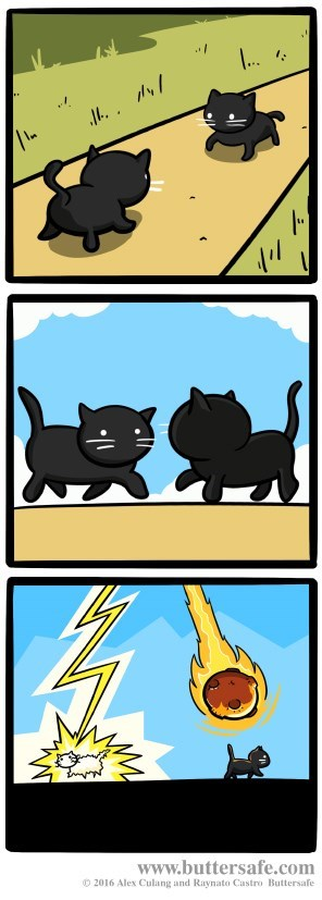 superstition,Cats,web comics