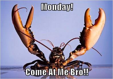 Monday!  Come At Me Bro!!