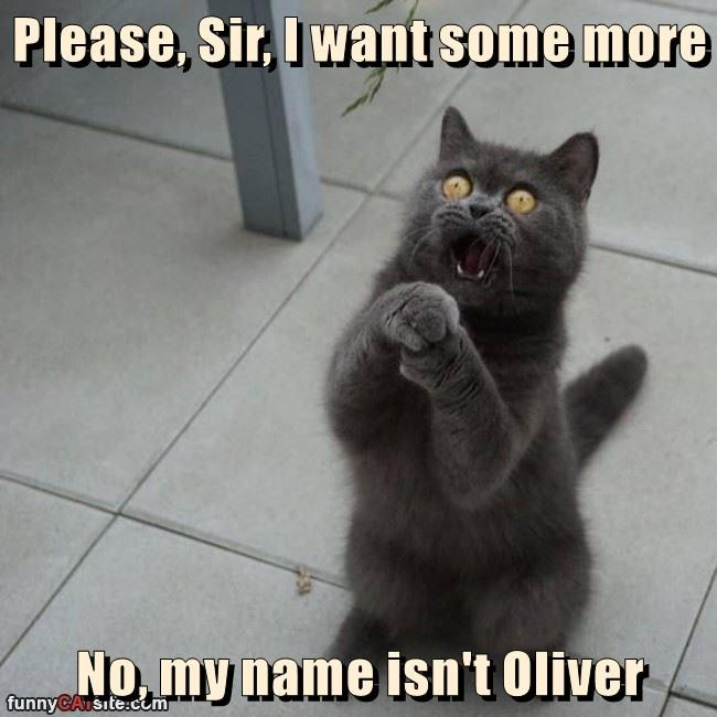 Please, Sir, I want some more  No, my name isn't Oliver