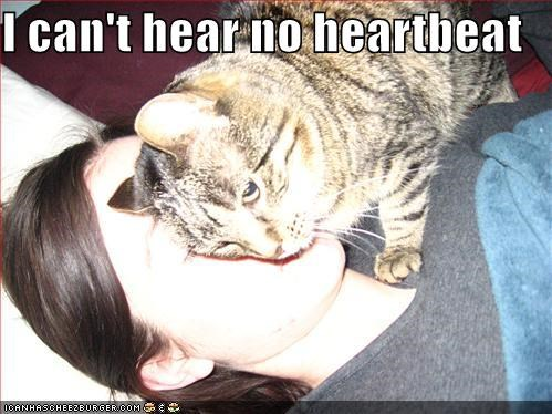 I can't hear no heartbeat