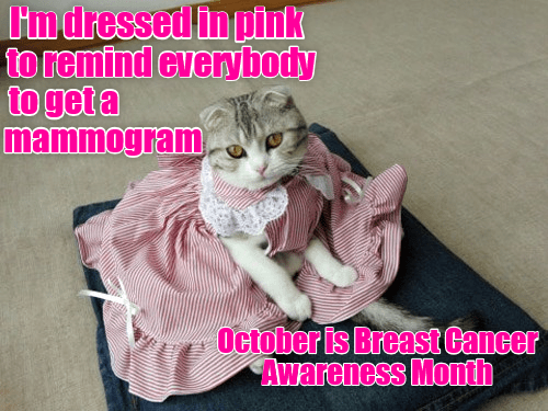 cat mammogram remind caption everybody - 8983631360