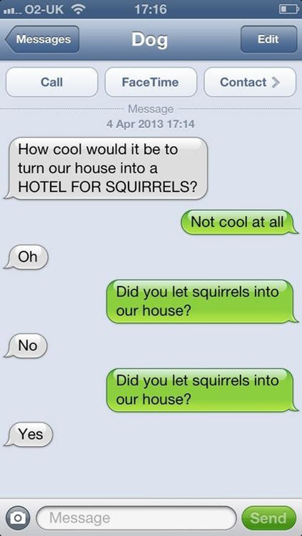 Text - 17:16 02-UK Dog Messages Edit Call FaceTime Contact Message 4 Apr 2013 17:14 How cool would it be to turn our house into a HOTEL FOR SQUIRRELS? Not cool at all Oh Did you let squirrels into our house? No Did you let squirrels into our house? Yes Message Send