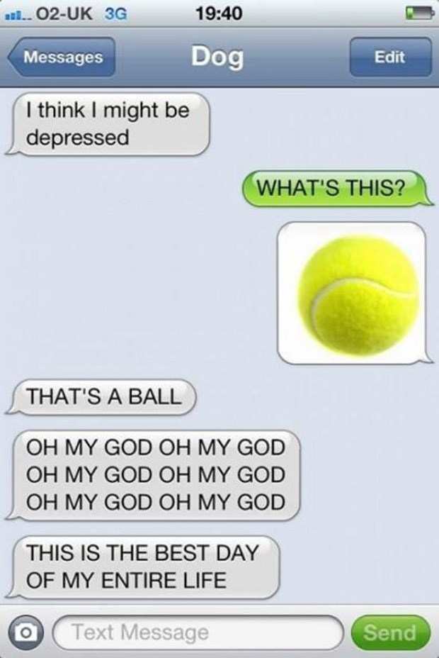 Text - 02-UK 3G 19:40 Dog Edit Messages I think I might be depressed WHAT'S THIS? THAT'S A BALL OH MY GOD OH MY GOD OH MY GOD OH MY GOD OH MY GOD OH MY GOD THIS IS THE BEST DAY OF MY ENTIRE LIFE Text Message Send