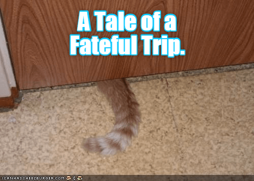cat tale fateful trip caption - 8983700224