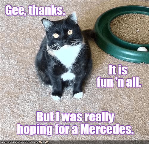 hoping cat mercedes thanks really caption - 8983726336