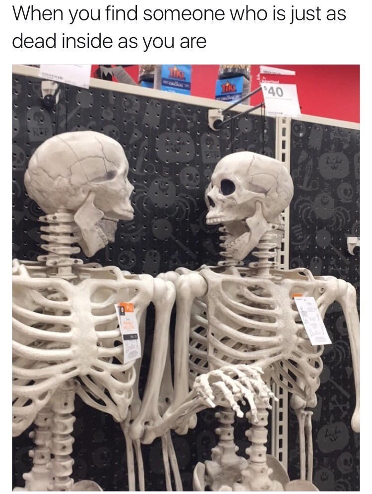 skeleton friends image