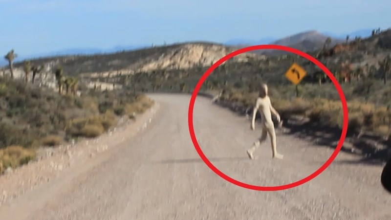 Alien sighting picture with red circle around the alien in case someone couldn't spot it.