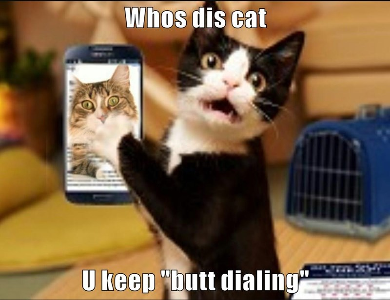"Whos dis cat   U keep ""butt dialing"""