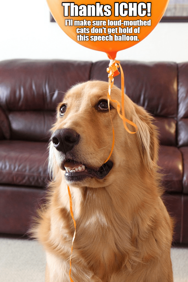 ICHC Speech Balloons - Only for Dogs?