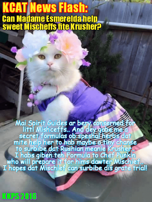 KCAT News Flash: Popular psychic & KKPS faculty member Madame Esmeralda is bery concerned abowt littl Mischief's upcoming battle wiff Krusher Kalashnikov in teh deadly Box of Doom. She contacts her Spirit Guides who may give some small help for Mischief!