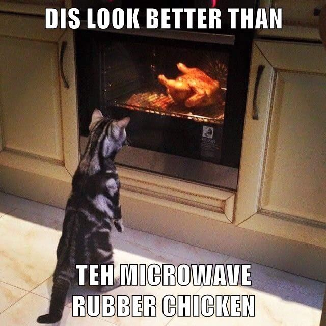 DIS LOOK BETTER THAN  TEH MICROWAVE                          RUBBER CHICKEN