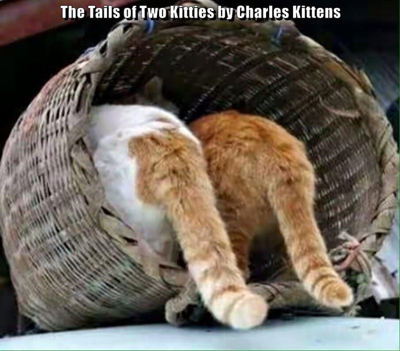 caption kitten charles kitties tail two (charles dickens) - 8984724480
