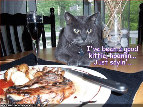 Expectation.. Kittie has it!