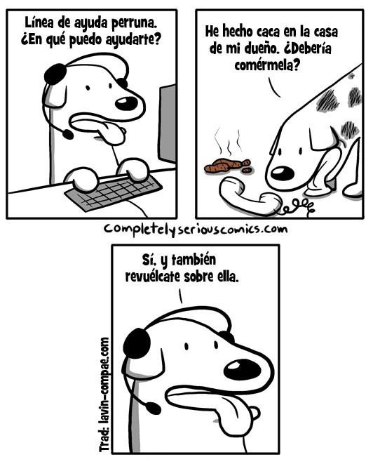 bromas viñetas perros animales - 8984808704
