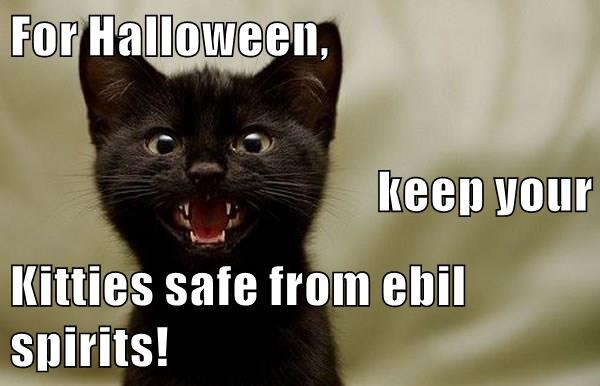 Iz scary at Halloween fur the babies