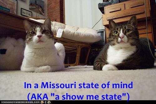 "In a Missouri state of mind                                                             (AKA ""a show me state"")"