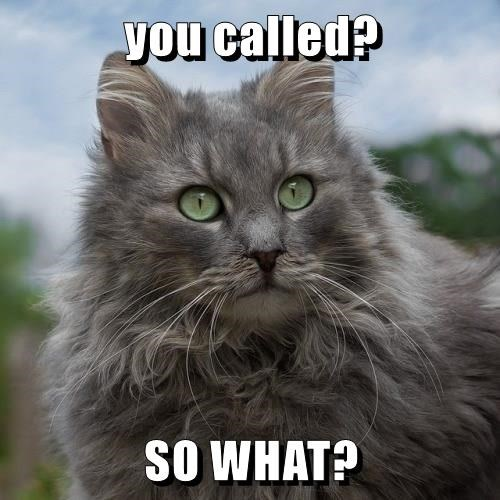 you called?  SO WHAT?