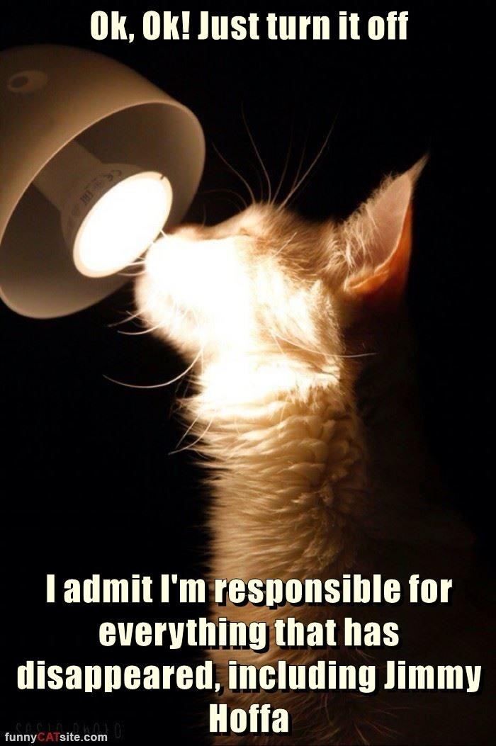 cat admit responsible everything jimmy hoffa caption disappeared