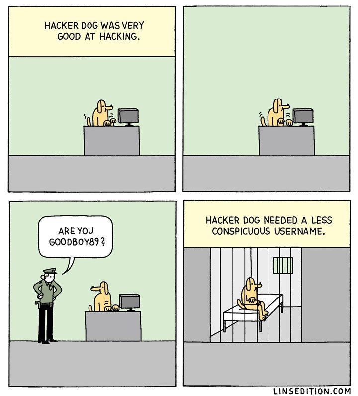 dogs hacking web comics