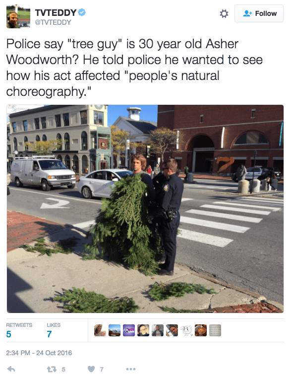 "tree puns - Screenshot - TVTEDDY Follow @TVTEDDY Police say ""tree guy"" is 30 year old Asher Woodworth? He told police he wanted to see how his act affected ""people's natural choreography."" RETWEETS LIKES 5 7 2:34 PM 24 Oct 2016 7 t5"
