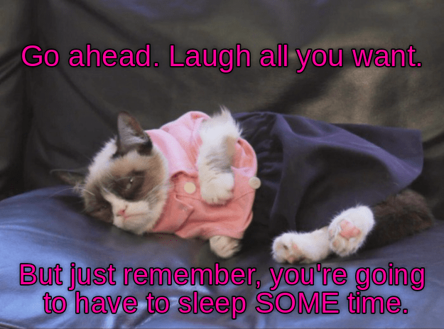 cat laugh sleep go ahead caption remember going - 8985377792