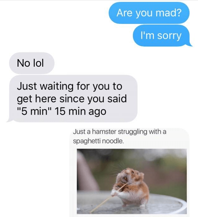 """Text - Are you mad? I'm sorry No lol Just waiting for you to get here since you said """"5 min"""" 15 min ago Just a hamster struggling with a spaghetti noodle."""