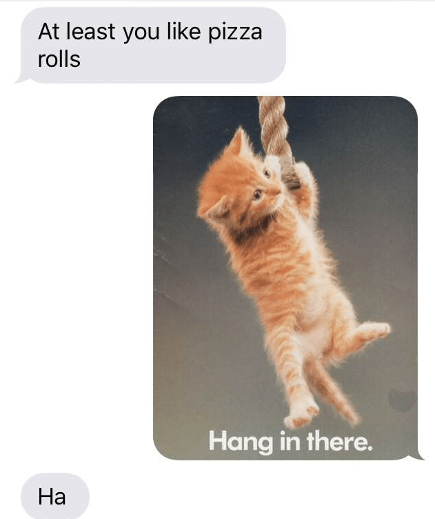 Cat - At least you like pizza rolls Hang in there. На